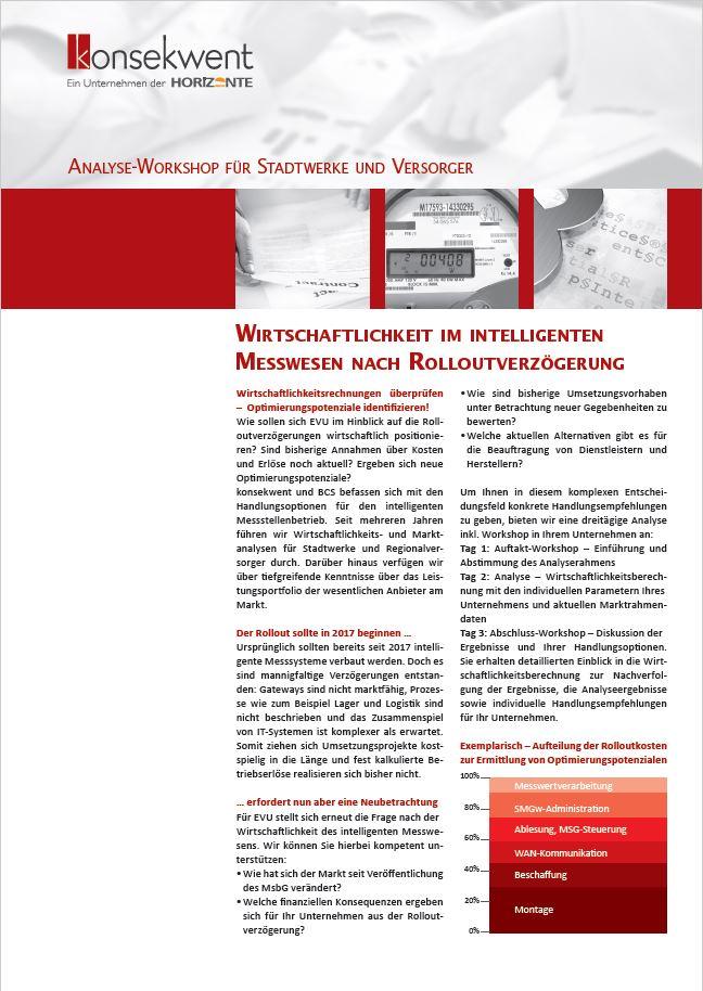 ANALYSE_WORKSHOP_FÜR_STADTWERKE_UND_VERSORGER