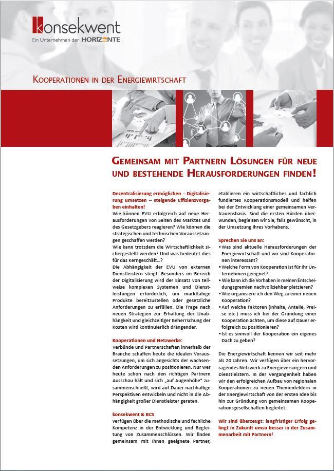 KOOPERATIONEN_IN_DER_ENERGIEWIRTSCHAFT
